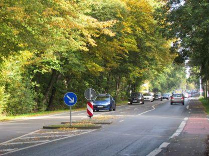 Hans-Driesch-Straße