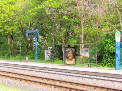 Hier befand sich der Eingang zum Friedhof Schönau