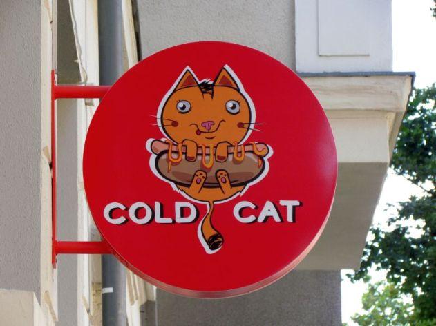 Cold Cat in der Riebeckstraße