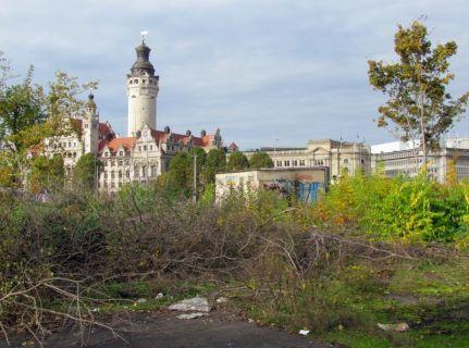 Blick von der Brache zum Neuen Rathaus