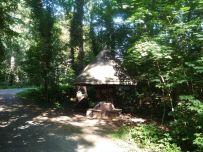 Unterstellpilz im Wildpark (Foto: Dieter, 5.9.2017)