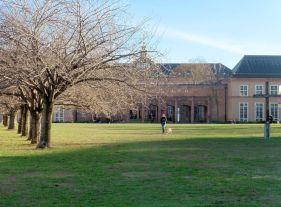 Der Johannisplatz, Blick zum Grassimuseum