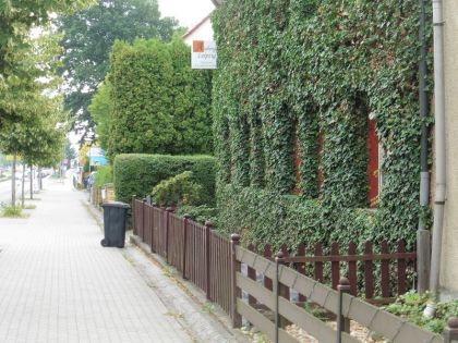 Grüne Wand in Rückmarsdorf (Sandberg)