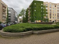 Grüne Wand in der Zentral- / Ecke Gottschedstraße