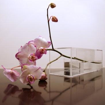 Vase9