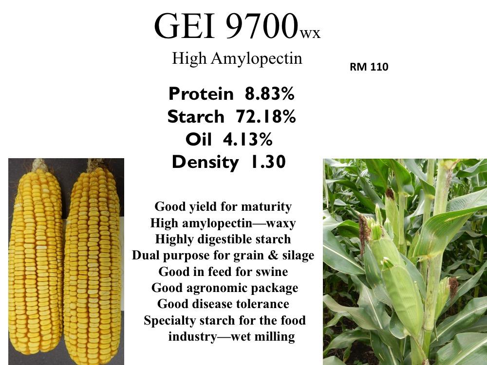 gei-9700-wx