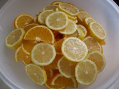 Oranges and lemons all sliced up...