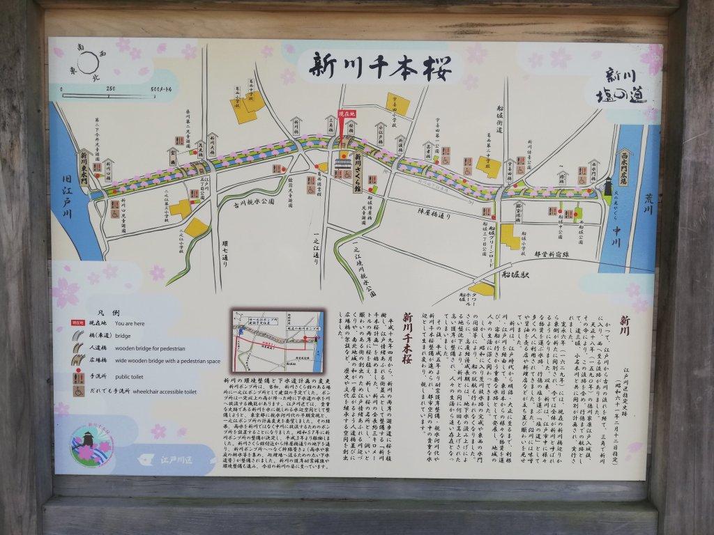 新川千本桜の全体マップ
