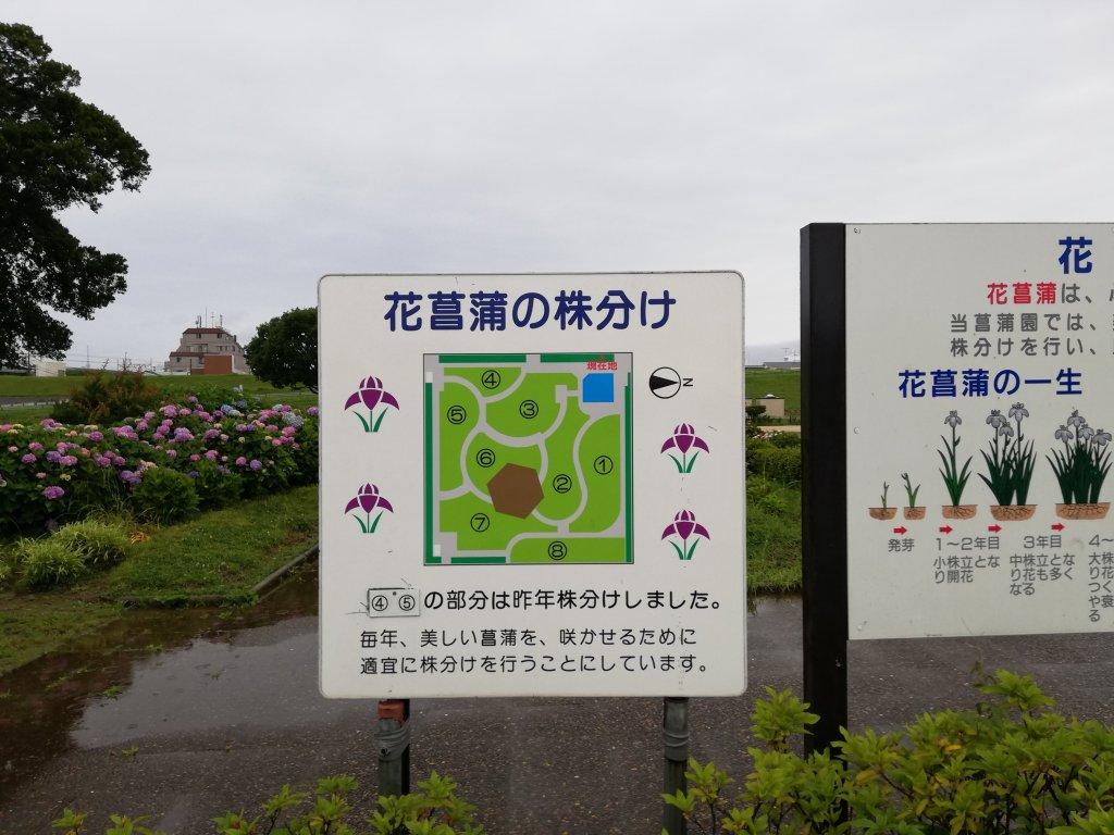 江戸川区の小岩菖蒲園の区分け