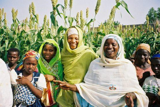 Hausa Muslim women - farmers
