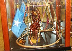Se den somaliske giraf og kultur