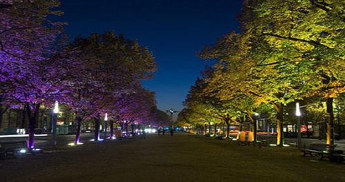 Mere lys og færre træer forebygger kriminalitet