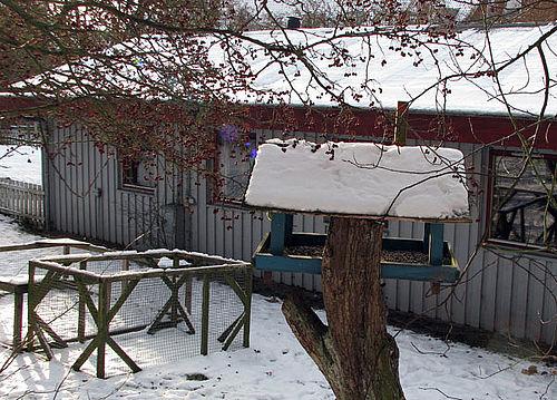 Fugle skal tælles i Århus Vest