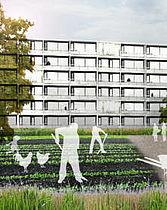 Støtte til Urban Farming i Gellerup