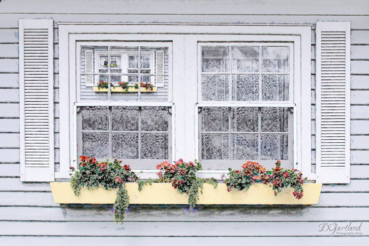 Window Boxes- A4 Illustrative composite photography by Deb Gartland