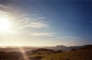 green-field-lens-flare
