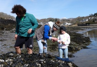 mussels-rafa-nina-mali