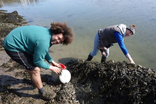 mussels-rafa-nina