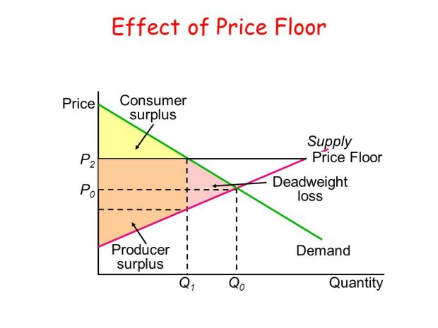 Image result for price floor pics