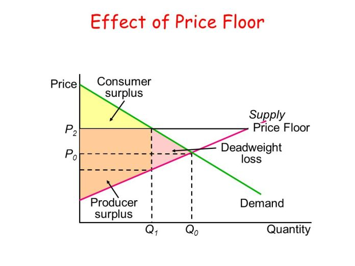 Price Floor And Its Implications Graphical Representation