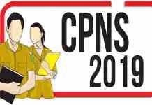 Ini Empat Formasi Penerimaan CPNS 2019 Dengan Kuota Terbanyak