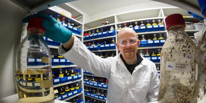 """Forsker romana Netzer i SINTEF har Fatt overraskende resultater i sine Försök med å Bryte ned oljesøl med bakterier.  Su i SINTEFs """"oljebibliotek"""".  Foto: Thor Nielssen."""