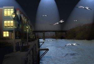 Image of Light Painting Night Flight