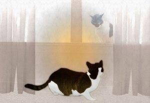 Image of Light Painting Uninvited