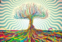 Tree Zero Three