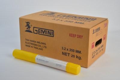 Gemini 309