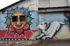 dog with sun graffiti, Renaca, Chile