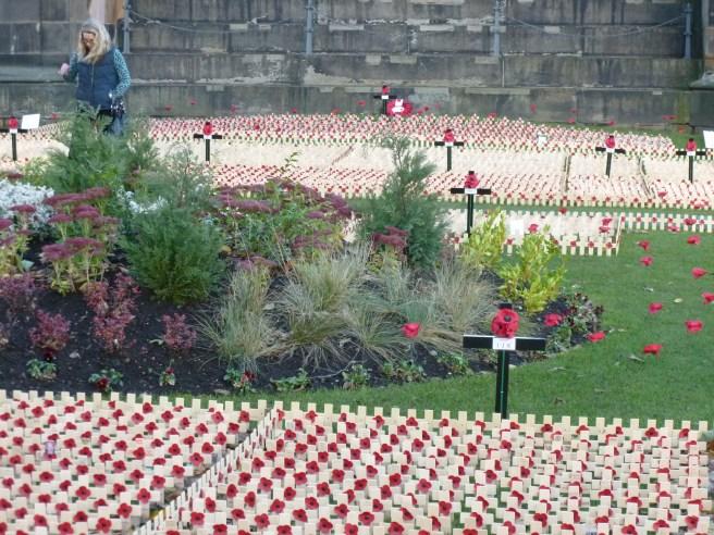 Remembrance Garden 2013