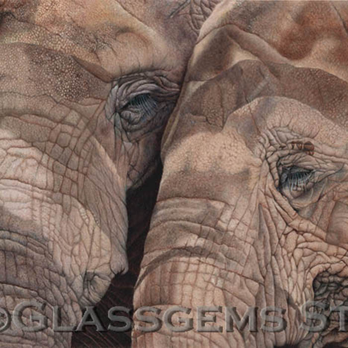 """""""BFF's - Save the Elephants"""", colored pencil on suede mat board, 16"""" x 24"""""""