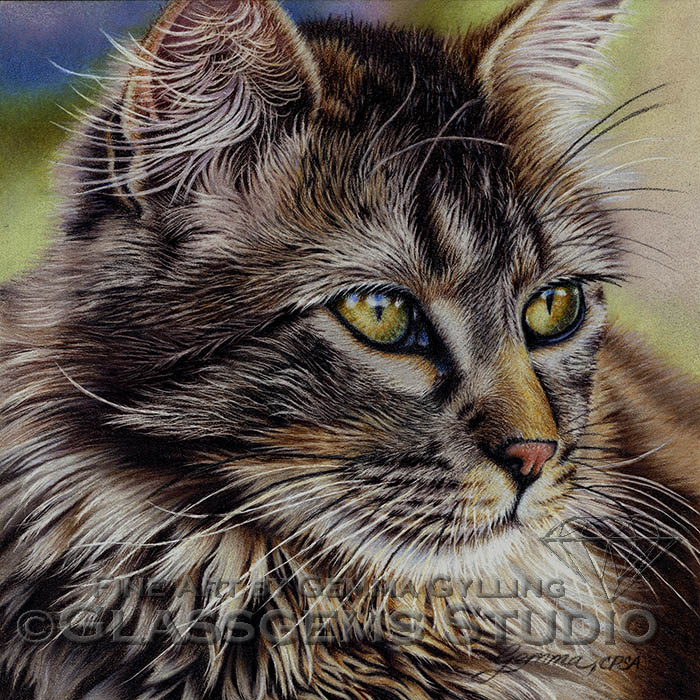 """Green Eyes"", Maine Coon Cat - colored pencils on pastelmat, 8"" x 8"""