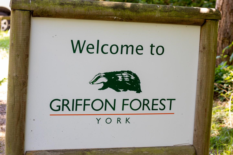 IMG 9703 1440x960 - Griffon Forest: Dog Friendly Holidays