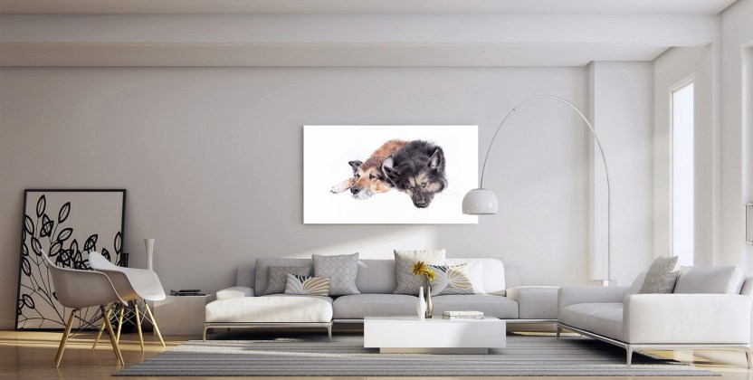 Room showcasing pet portrait