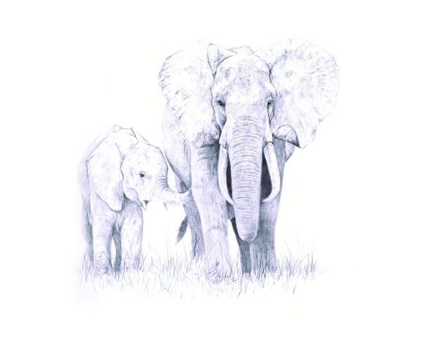 Elephant mum and calf print