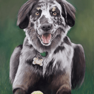 Hand painted dog portraiits