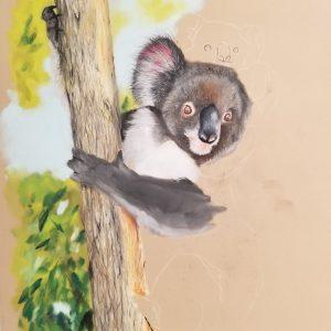 Australia Widlife Pastel Painting