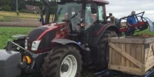 karottenernte traktor