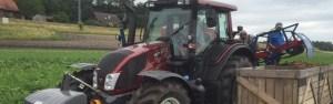 traktor karottenernte