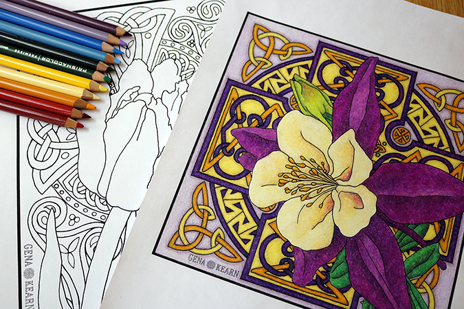Colored Pencil For Adult Coloring Books