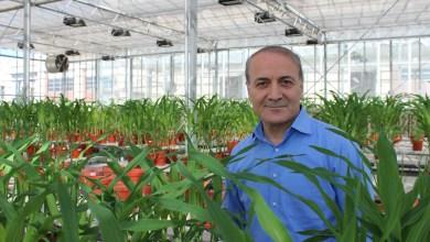 Photo of Dünyanın En Etkili Bilim İnsanları Listesinde Sabancı Üniversitesi Öğretim Üyesi Prof. Dr. İsmail Çakmak Türkiye'den Birinci Sırada