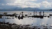 People reef gleaning at low tide, Danajon Bank, Bohol Province, Central Philippines. Photo: Danika Kleiber.