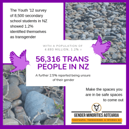 Number of Trans People in NZ