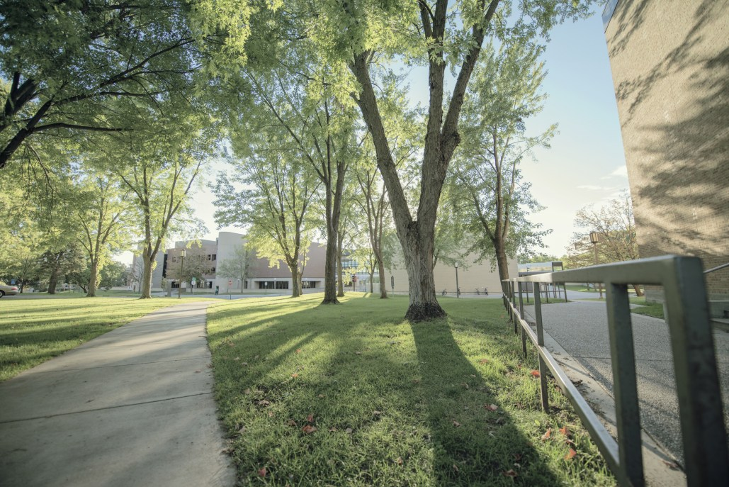 sidewalk, lawn, trees and college campus buildings on a sunny afternoon