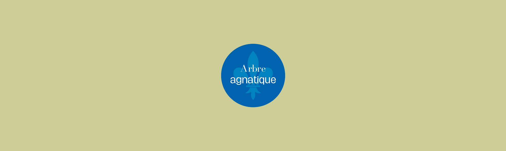 bannière imprimer arbre généalogique - Généagraphe - arbre agnatique