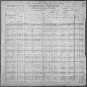 1900 US Census - Crockett Sheffey