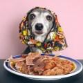 福岡生まれの愛犬用おやつ「犬の一日」が大好きなジーンとダーコです。