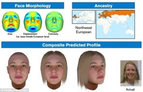刑事 DNA 生理描繪技術,是指可藉由DNA的表現型 (phenotype)來預測該DNA擁有者的外觀,可用於難以找到嫌疑人或資料庫搜索失敗時,幫助辦案人員建立可疑人選的初步描繪。此技術的先驅為來自維吉尼亞州的 Parabon Nanolabs 教授,圖中照片所示。來源:http://www.dailymail.co.uk/sciencetech/article-2932943/Forensic-experts-create-e-fits-DNA-Traces-crime-scenes-used-build-face-shapes-accurate-eye-skin-colours.html